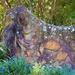 Aboriginal Rock Art ~