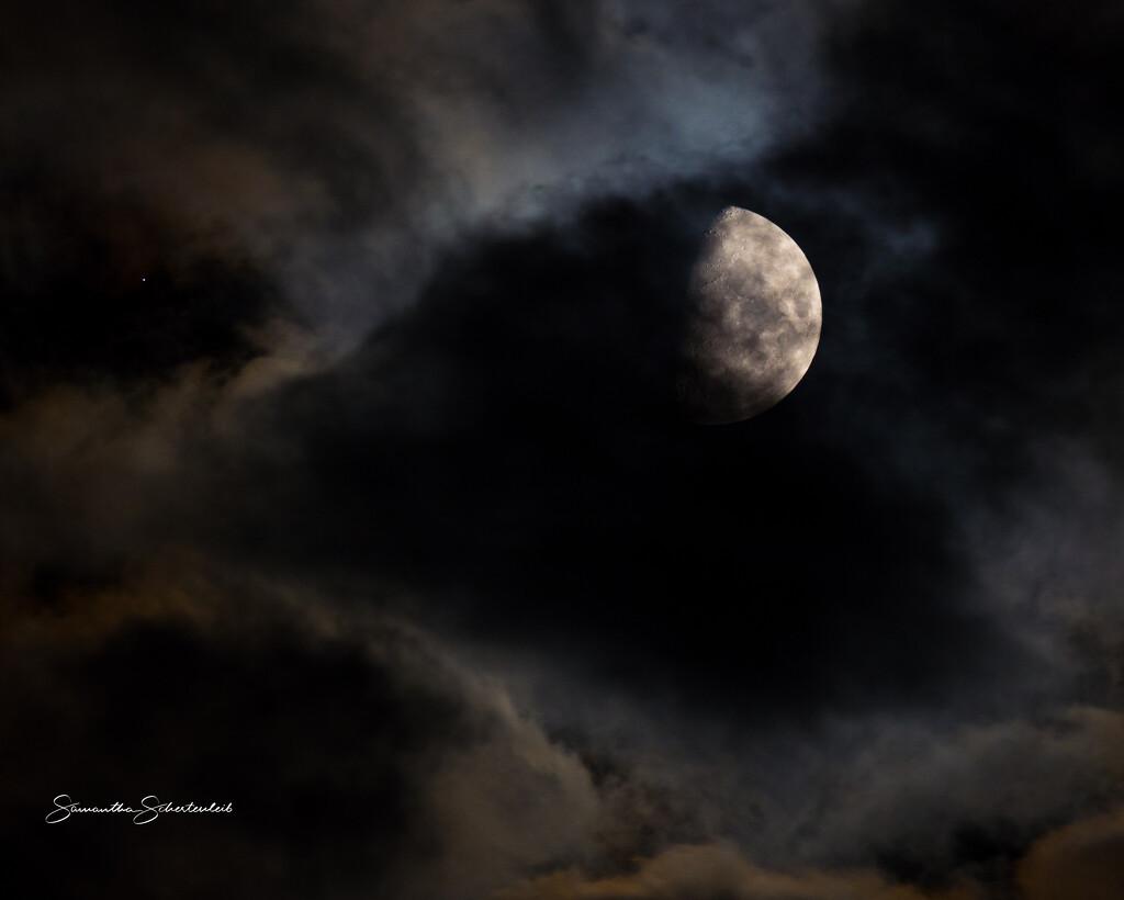 Good night, Moon.  by sschertenleib