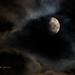 Good night, Moon.  on 365 Project