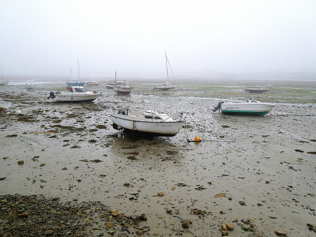 Misty morning in the harbour by etienne