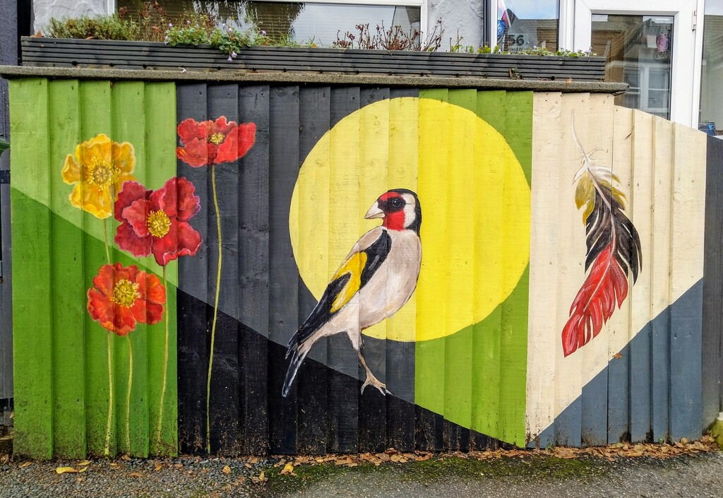 Goldfinch by boxplayer