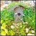 A birdhouse in my garden