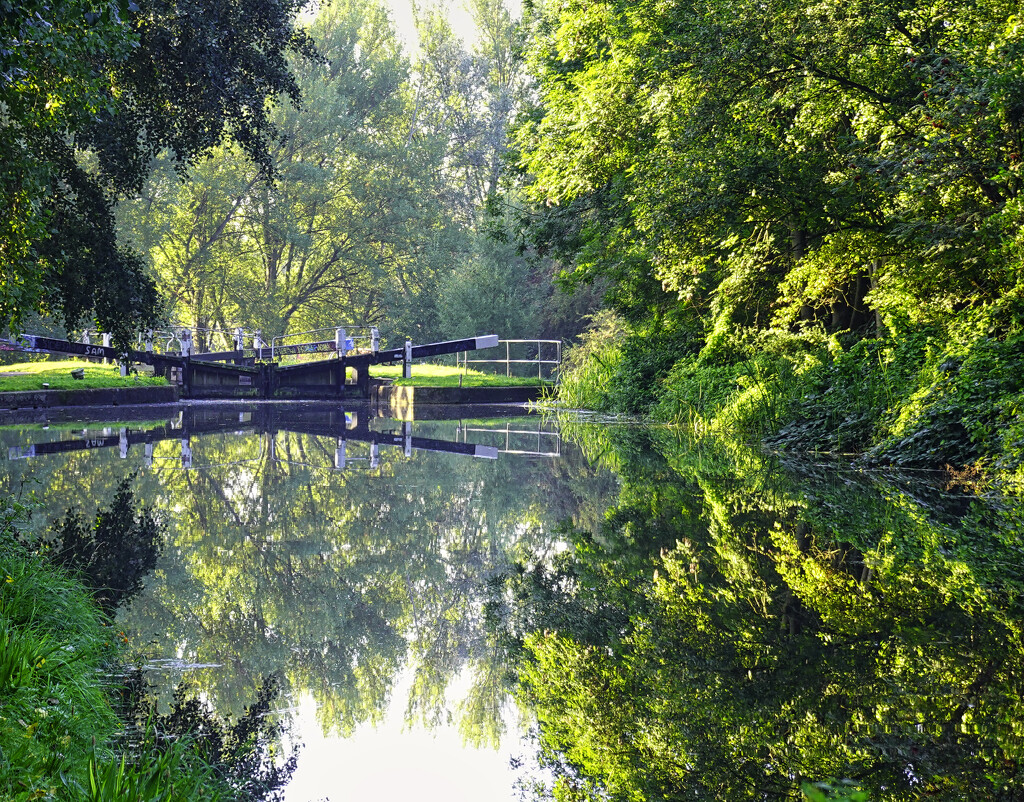 Local Canal. by tonygig