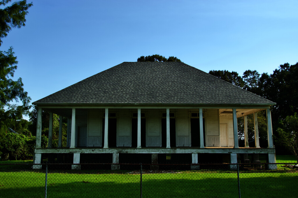 A new roof  by eudora