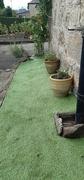17th Sep 2021 - The green green grass