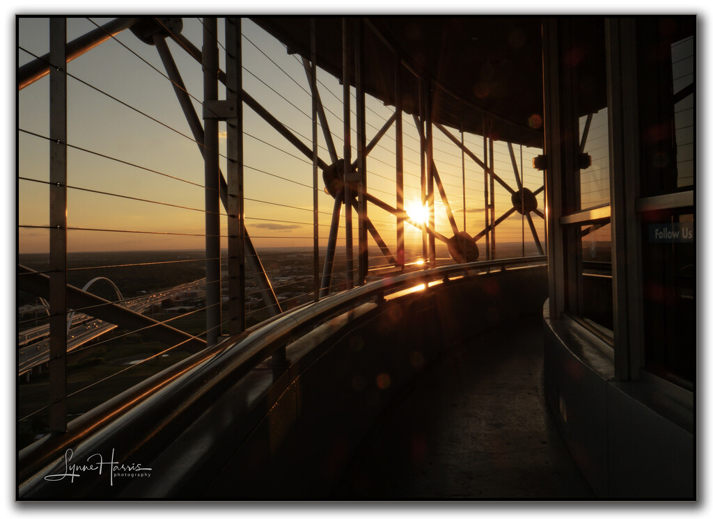 Sunset on the Geo Deck by lynne5477
