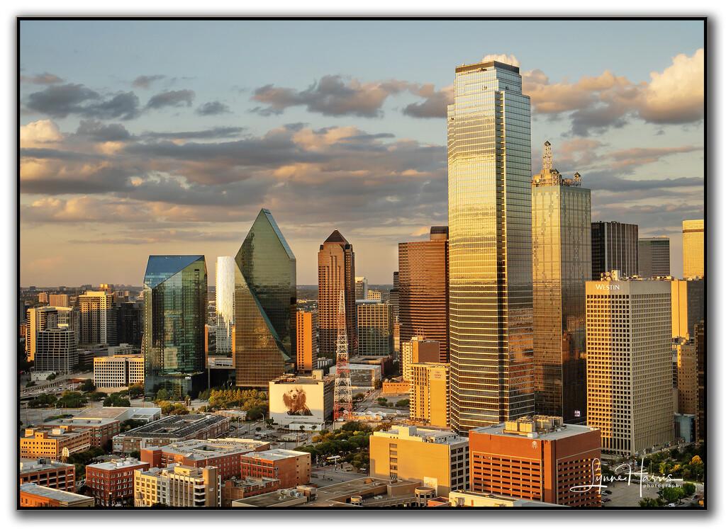 Dallas by lynne5477