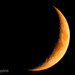 Crescent Moon  by lesip