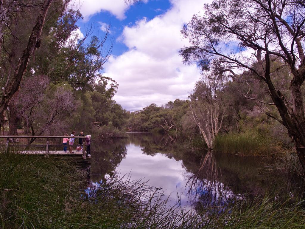 Mussel Pool, Whiteman Park_9183241 by merrelyn