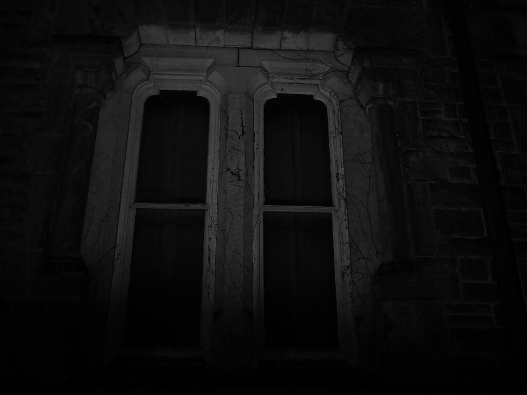 SOOC window by northy
