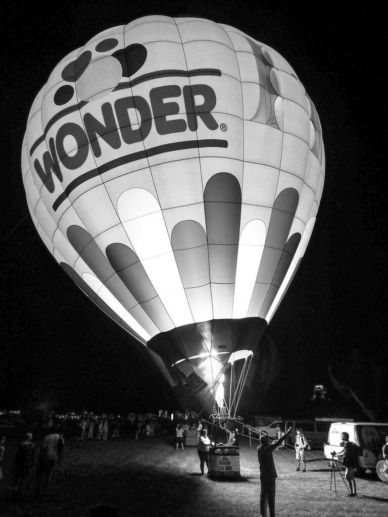 Wonder... by rosiekerr