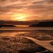 Sunrise Papanui Inlet