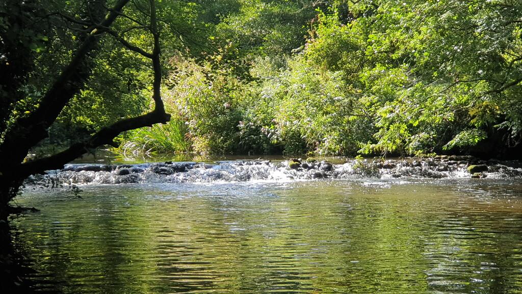 River Tone by julienne1