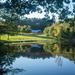 Great Brook Farm Pond