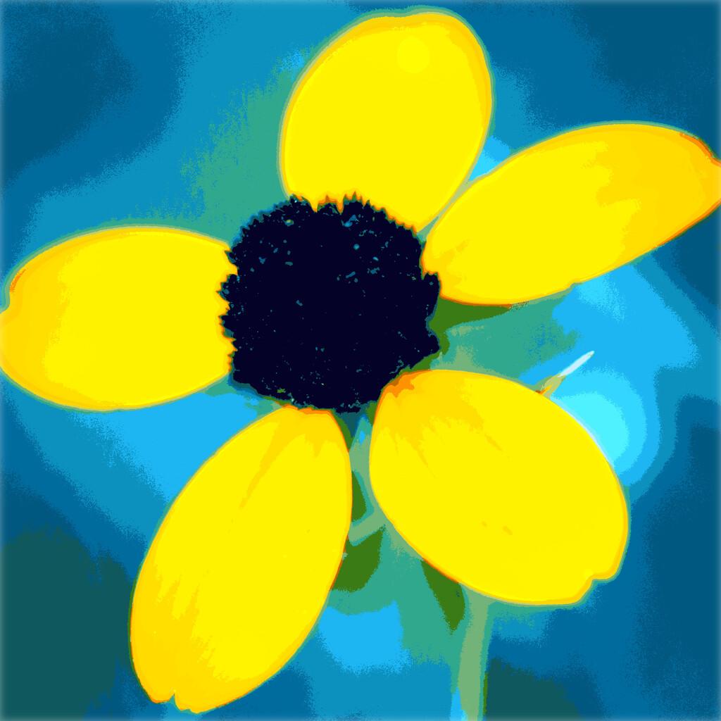 A Few Petals Short by juliedduncan