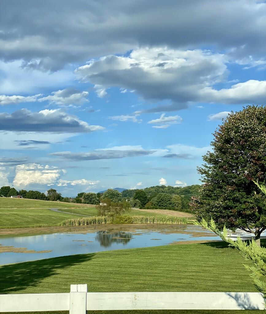 Grace Meadows Farm by calm