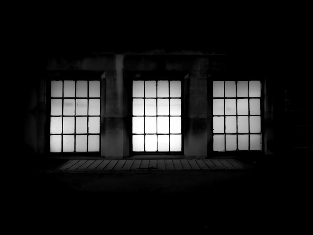 darkly now by northy