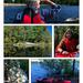 Sunday Kayaking