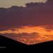 Portrait of sunset