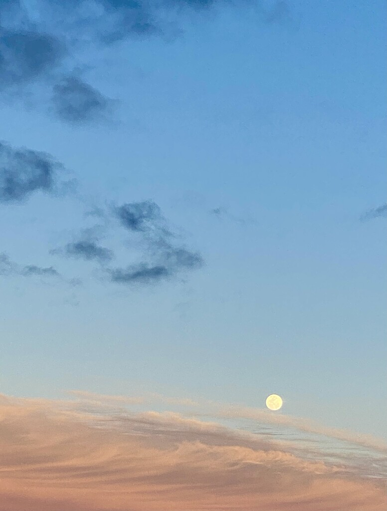 Full moon by nicolecampbell