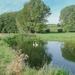 Bungay Common