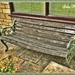 Bench with Sister's Memories. (Click capture for poem) by ladymagpie