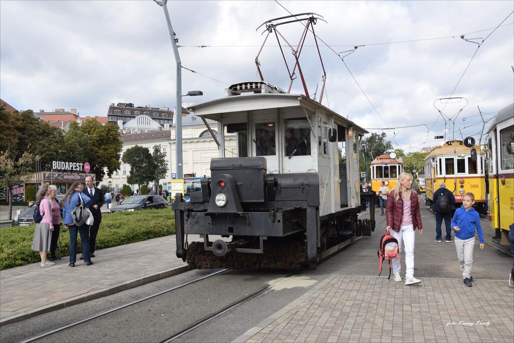 Meeting of old trams! by kork