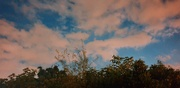 20th Sep 2021 - Night Sky in Palmers Green