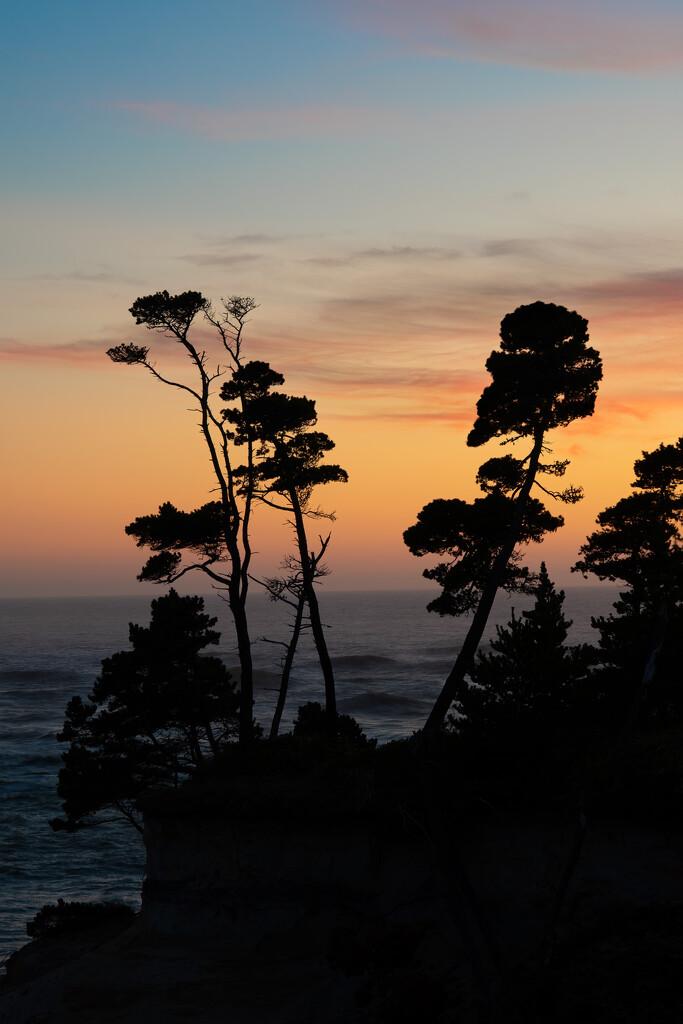 Sun set on the beach by teriyakih