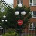 Light #5: Quebec City Street Lights