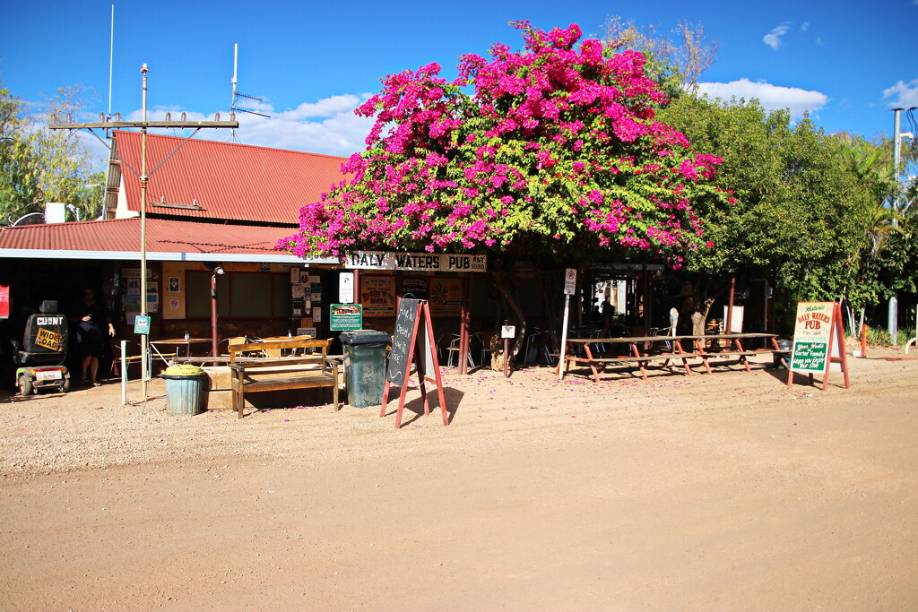 The Iconic Daly Waters Pub by terryliv