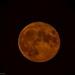 Moon Rise 7.45 pm