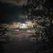 Last night's moon...