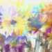 Multi-colored Daisies by lstasel
