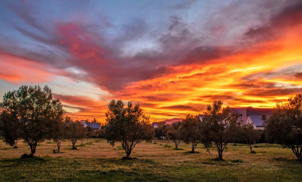 Yesterdays Sunrise  by ludwigsdiana