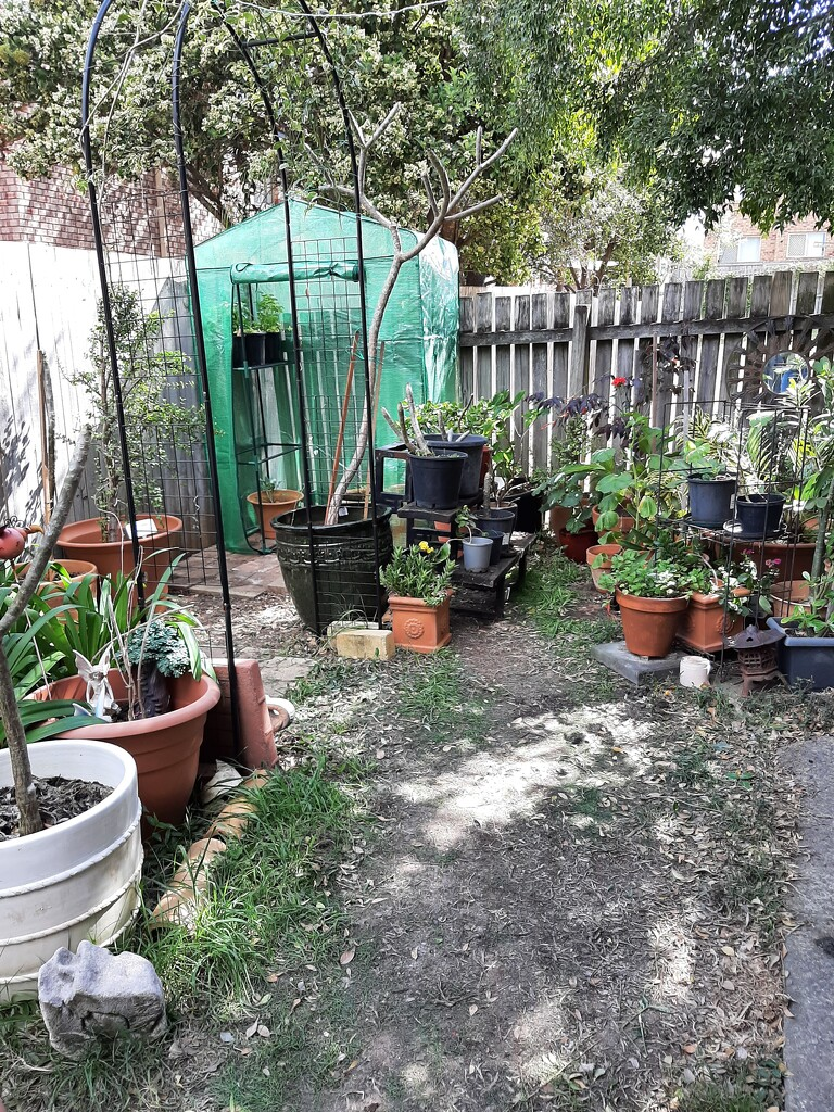 Gardening Project  - part 1 by mozette