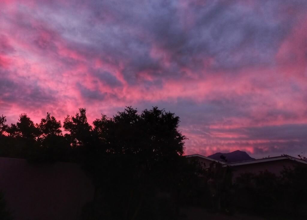 Pink Sunset  by salza