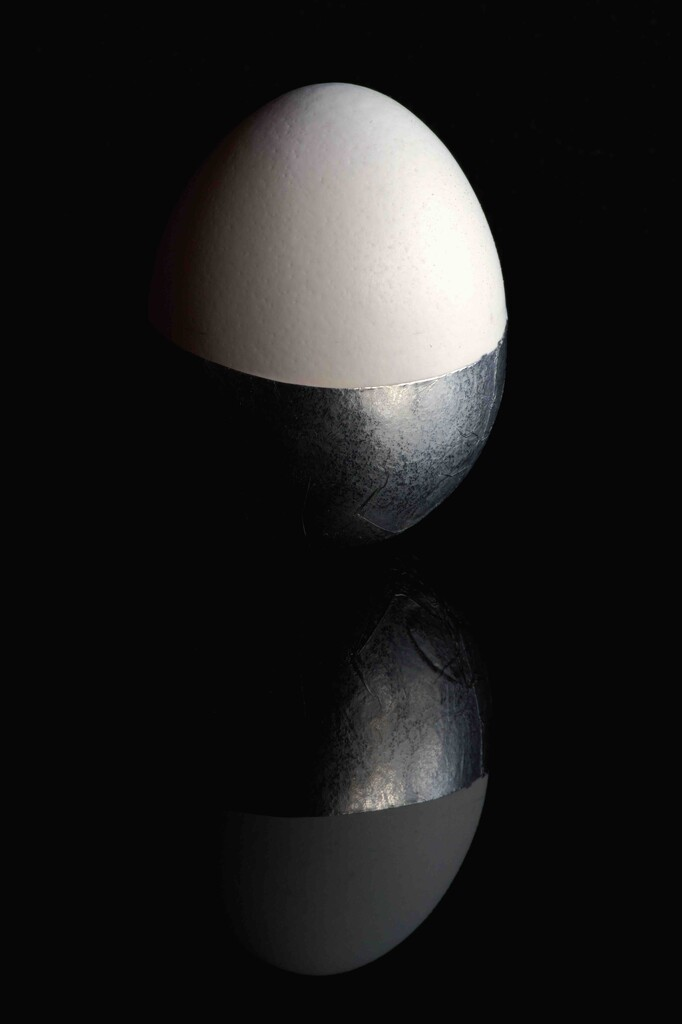 Eggs-foliate by moonbi