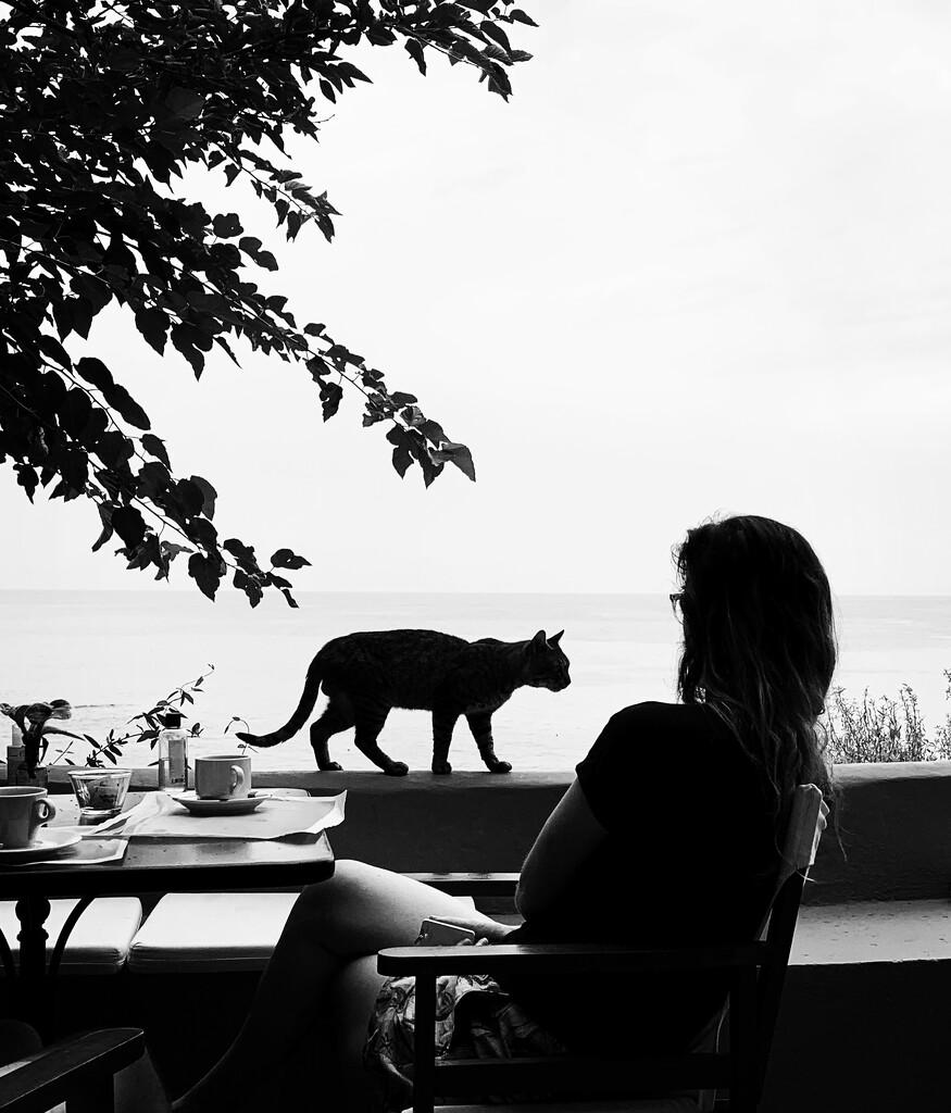 Morning tea by caterina