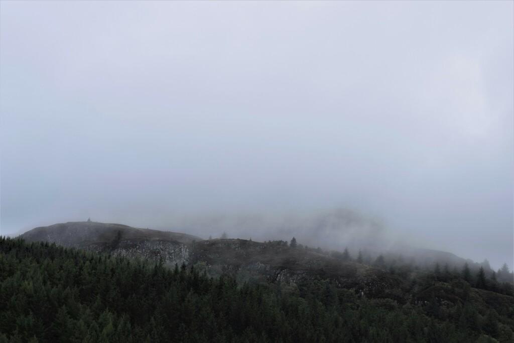 Scotch mist by christophercox