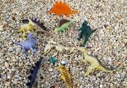 23rd Sep 2021 - The Post Dinosaur Race Banquet?