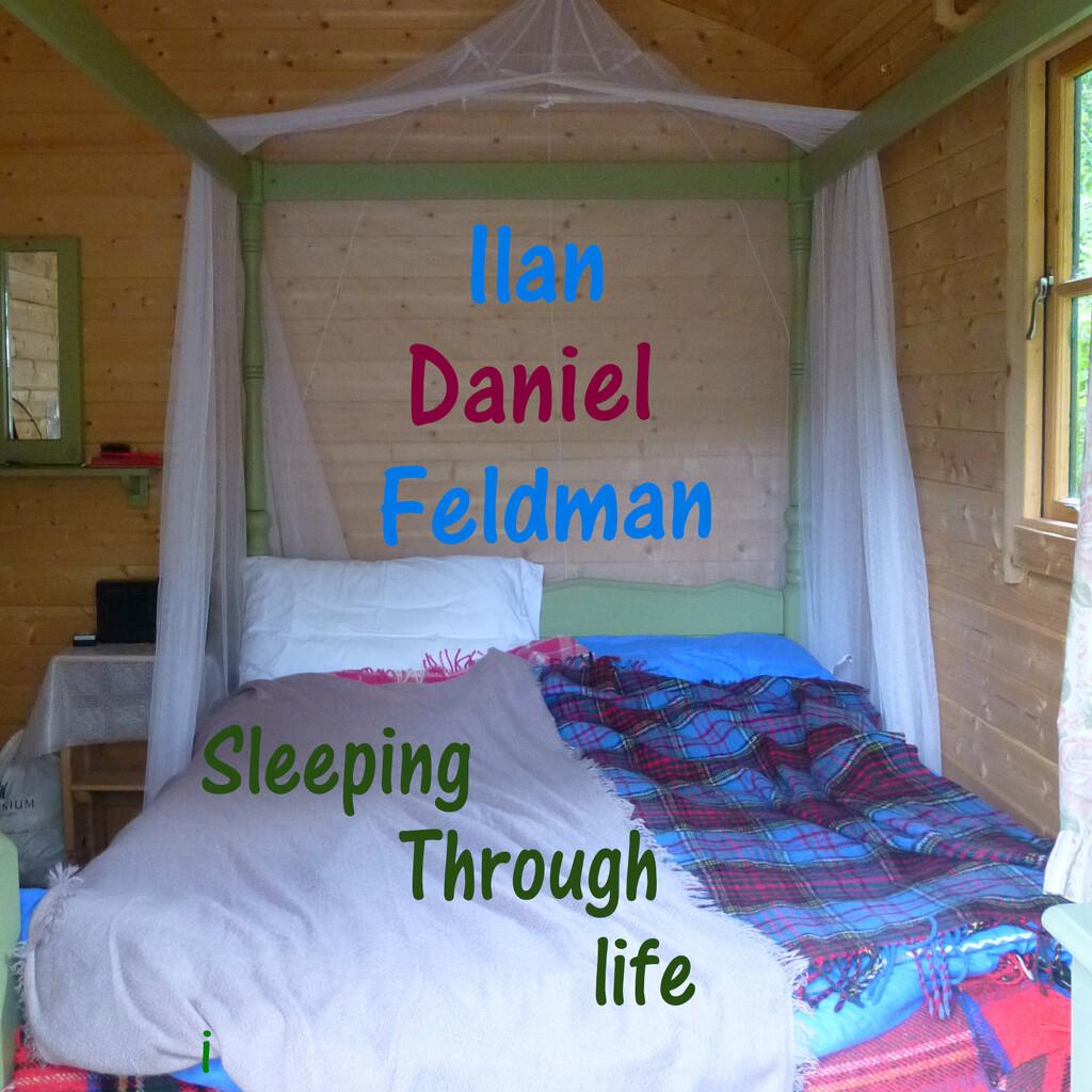 Sleepng Through Life by 30pics4jackiesdiamond