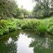 River Erewash.