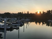 24th Sep 2021 - Harbor Sunset