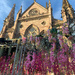 Church and flower.  by cocobella
