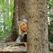 Tree Fairy, Puzzled