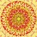 Pattern by sugarmuser