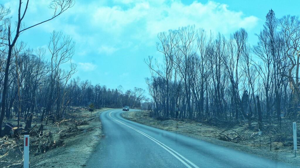 Effects of the 2019/20 summer bushfires by leggzy