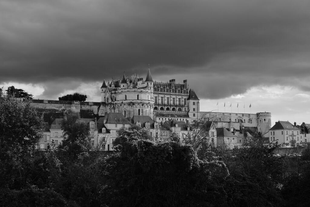 Amboise - Château Royal by vignouse
