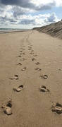 29th Sep 2021 - Footprints in the Sand